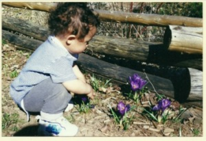 aadi and crocus