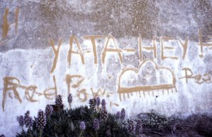 Alcatraz-Grafitti-Yata-Hey