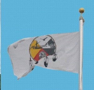 mole lake flag
