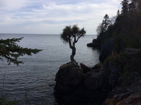 """Manido Gizhigans,"" ""Spirit Little Cedar Tree."" - Grand Portage, MN Credit: CBS"
